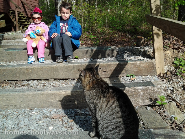 Children looking at a cat