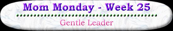 Mom Monday Gentle Leader