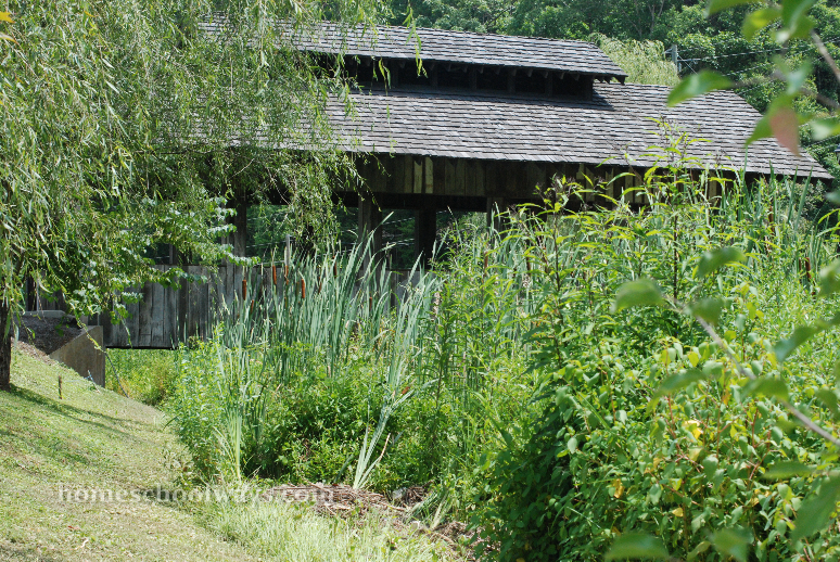 The pretty covered bridge where our cattail patch lies