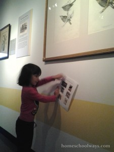 Girl looking for matches between her paper and the exhibits