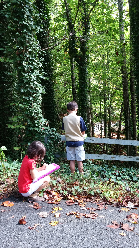 Boy and girl sketching in nature