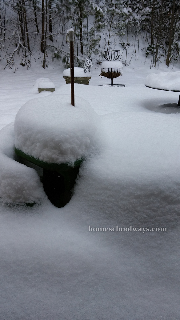 One foot of snow on the picnic table